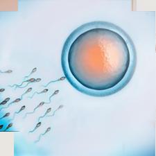 Hiếm muộn do tinh trùng
